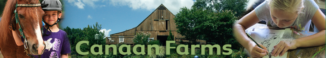 canaan farms
